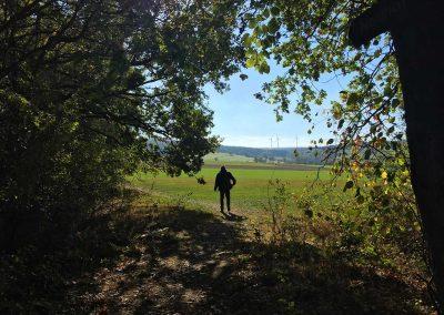 Wanderweg bei Gehlert, Westerwald