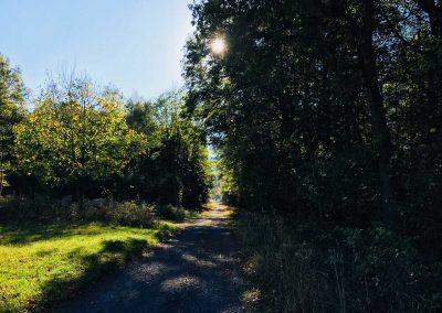 Spazierweg im Westerwald